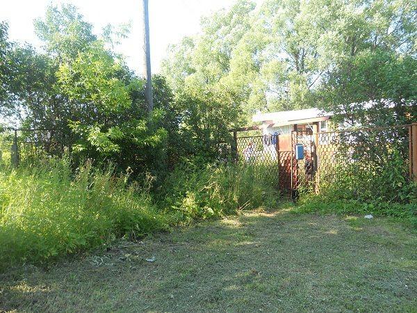 отзывчивый, фотографии деревни тишково ступинского района расположен