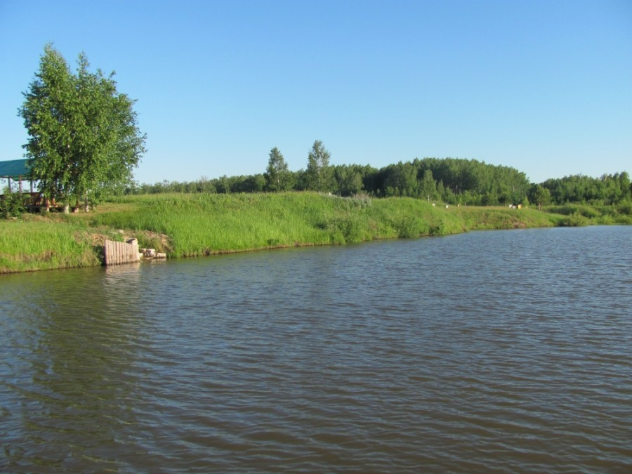 обладает свойствами рязанская область поселок чучково фото университет одно